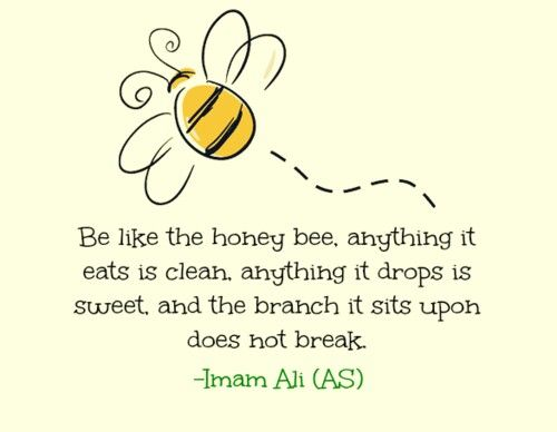 Be like a Honey Bee.