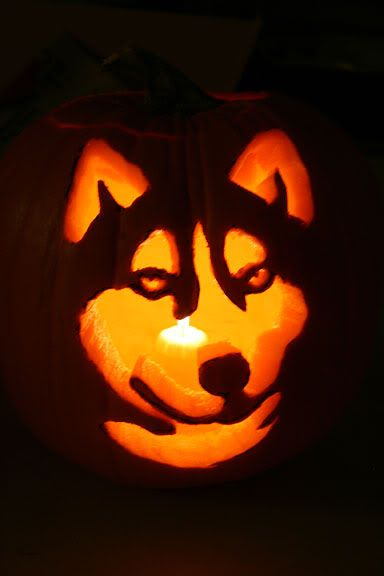 Husky Pumpkin template - in case ivan feels like carving his own pumpkin haha! but what would our sweet Pumpkin carve haha??