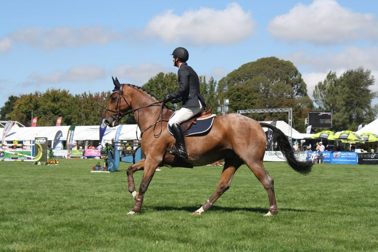 Mathew Gilmour and BMW Leo Silver were fourth in the Norwood Gold Cup