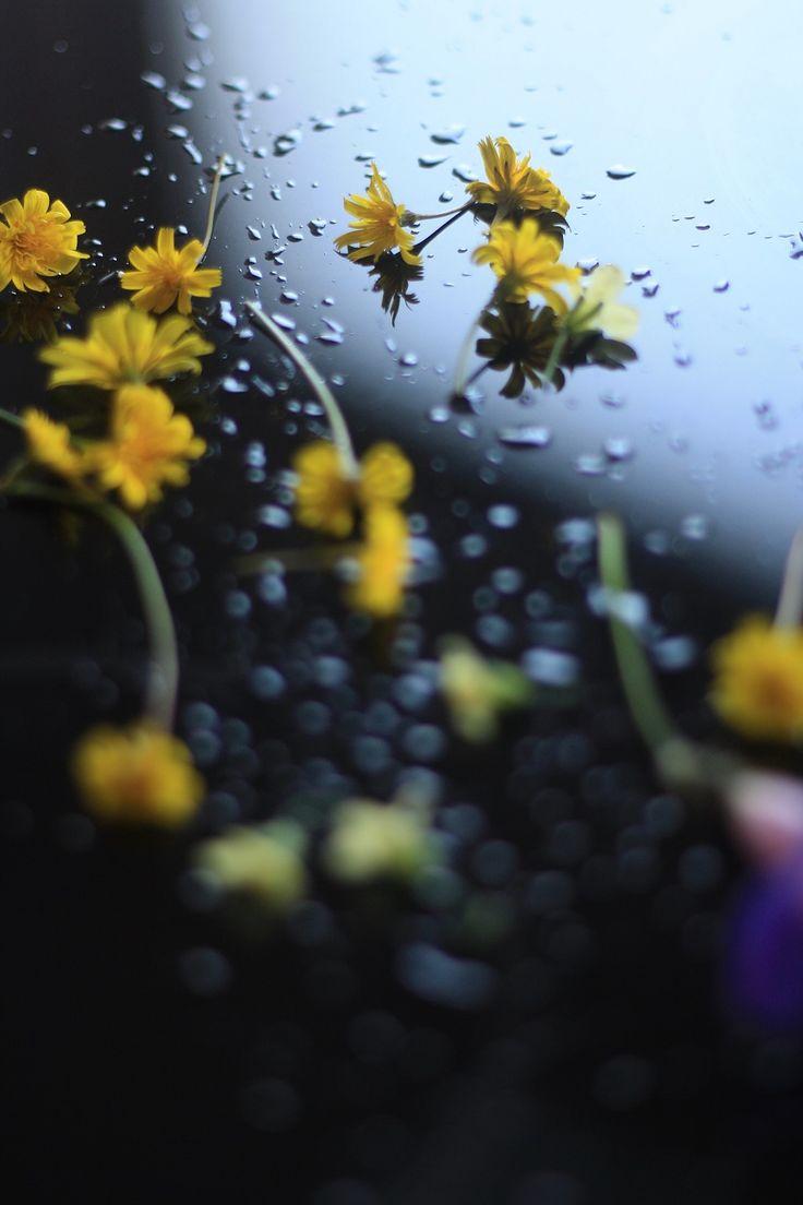 Flowers & drops