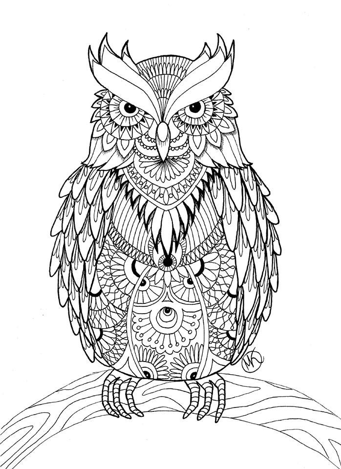 free coloring page for adults owl mandala doodle