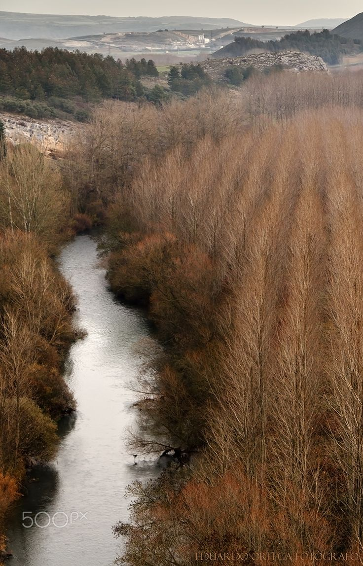 Invierno en Aguilar de Campoo - Paisaje invernal en el norte de Palencia
