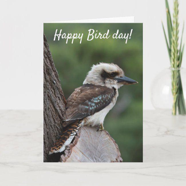 Funny Happy Bird Day Birthday Kookaburra Australia Card Zazzle Com Happy Bird Day Funny Happy Bird
