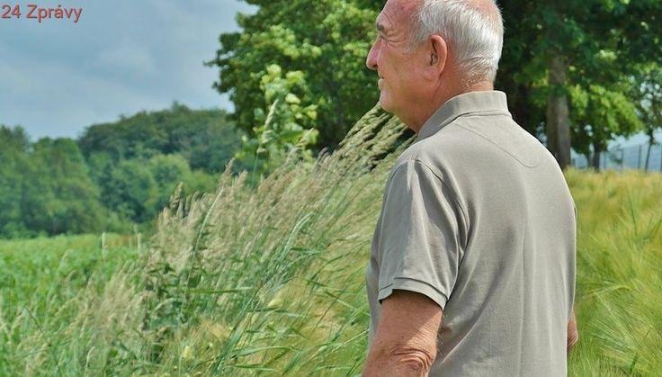 Sedm rad jak si udržet bystrý mozek i ve stáří, vyvarujete se demence i Alzheimera