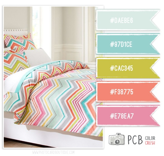 Category : Color Crush Palette   Photographer Templates by Photo Card Boutique - Page 2