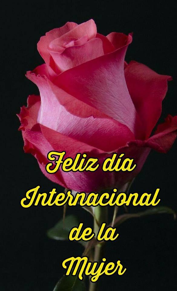 Imágenes Y Frases Día Internacional De La Mujer Feliz Día De La Mujer Dia De La Mujer Feliz Día Internacional De La Mujer