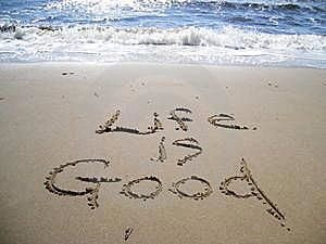 How perfect on a gorgeous beach day!: At The Beaches, Good Life, Beaches Time, Beaches Life, The Ocean, Things Beachi, La Vie, Life Is Good, Summer Time