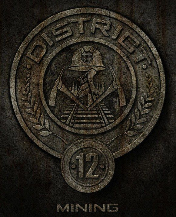 """Which """"Hunger Games"""" District Do You Actually Belong In My brother would be so proud that i am in district twelve"""