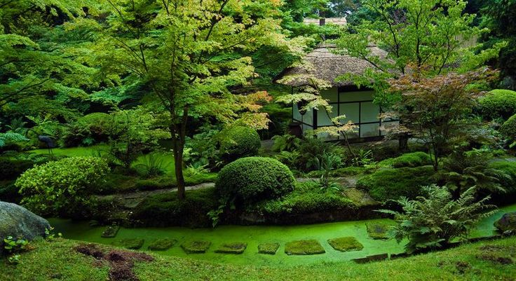 Image detail for green japanese landscape garden for Japanese outdoor plants