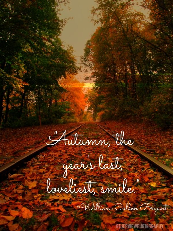 """Autumn, the year's last, loveliest, smile.""~ William Cullen Byrant"