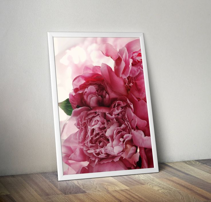 Pioenrozen afdrukken, roze pioenrozen bloem fotografie, botanische afdrukken, afdrukken van de plant, natuurfotografie, pioenrozen foto, cadeau voor haar, door HandmadeLUXArt op Etsy https://www.etsy.com/nl/listing/520656726/pioenrozen-afdrukken-roze-pioenrozen
