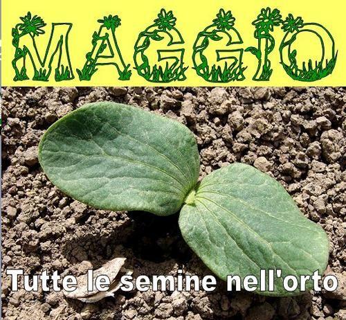 Calendario lunare di MAGGIO 2017. Tutte le semine nell'orto