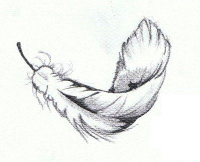 Image result for feather sketch