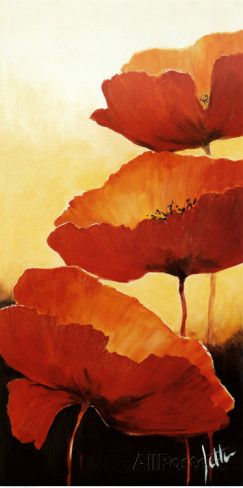Three Red Poppies II Posters by Jettie Rosenboom at AllPosters.com