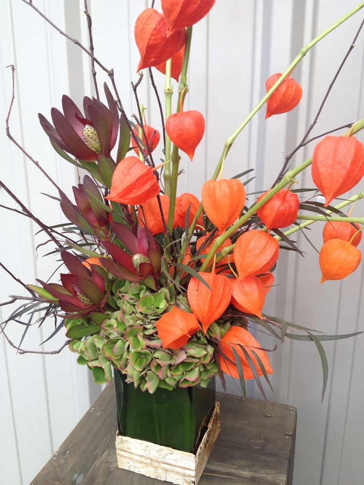 fall flowers: physalis, leucadendron, hydrangea, birch twigs and agonis