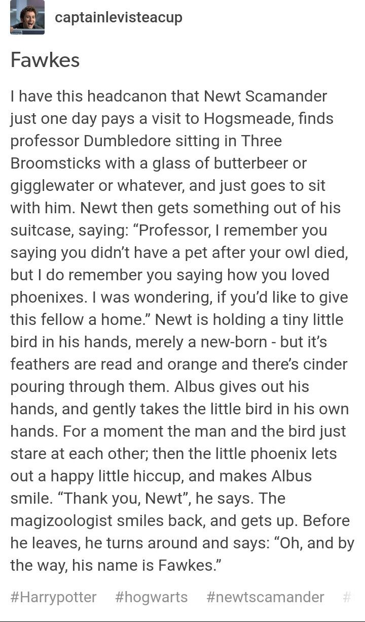 Fawkes headcanon, that would be cute, except Phoenix are extremely hard to catch, and choose their humans much like wands do...
