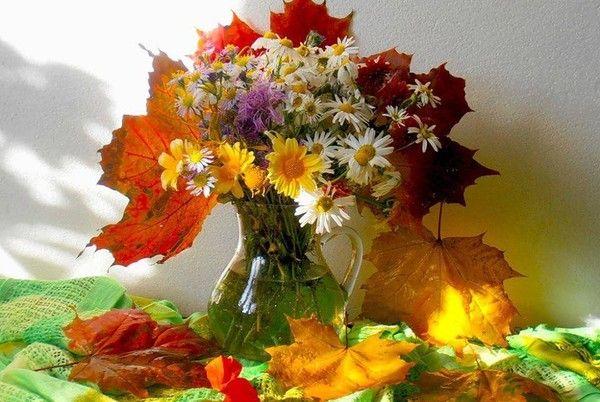 Virágos csendélet,Virágos csendélet,Virágos csendélet,Őszi csendélet,Őszi csendélet,Csodálatos Francia kép,Őszi csendéletek,Őszi csendéletek,Őszi csendéletek,Őszi termények, virágok, - klementinagidro Blogja - Ágai Ágnes versei , Búcsúzás, Buddha idézetek, Bölcs tanácsok , Embernek lenni , Erdély, Fabulák, Különleges házak , Lélekmorzsák I., Virágkoszorúk, Vörösmarty Mihály versei, Zenéről, A Magyar Kultúra Napja-Jan.22, Anthony de Mello, Anyanyelvről-Haza-Szűlőfölről, Arany János művei…