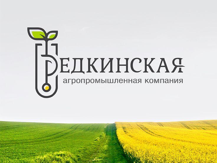 """Redkinskaya agro-industrial company"""