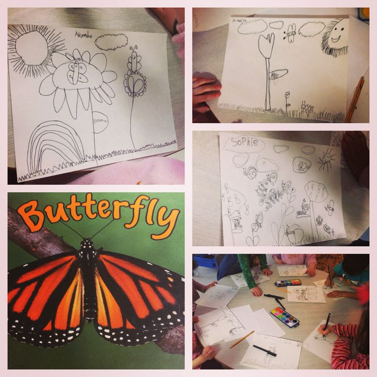 """What will our caterpillars look like?  A drawing activity for our """"wondering minds""""  We used a black sharpie and water paints to add colour!"""
