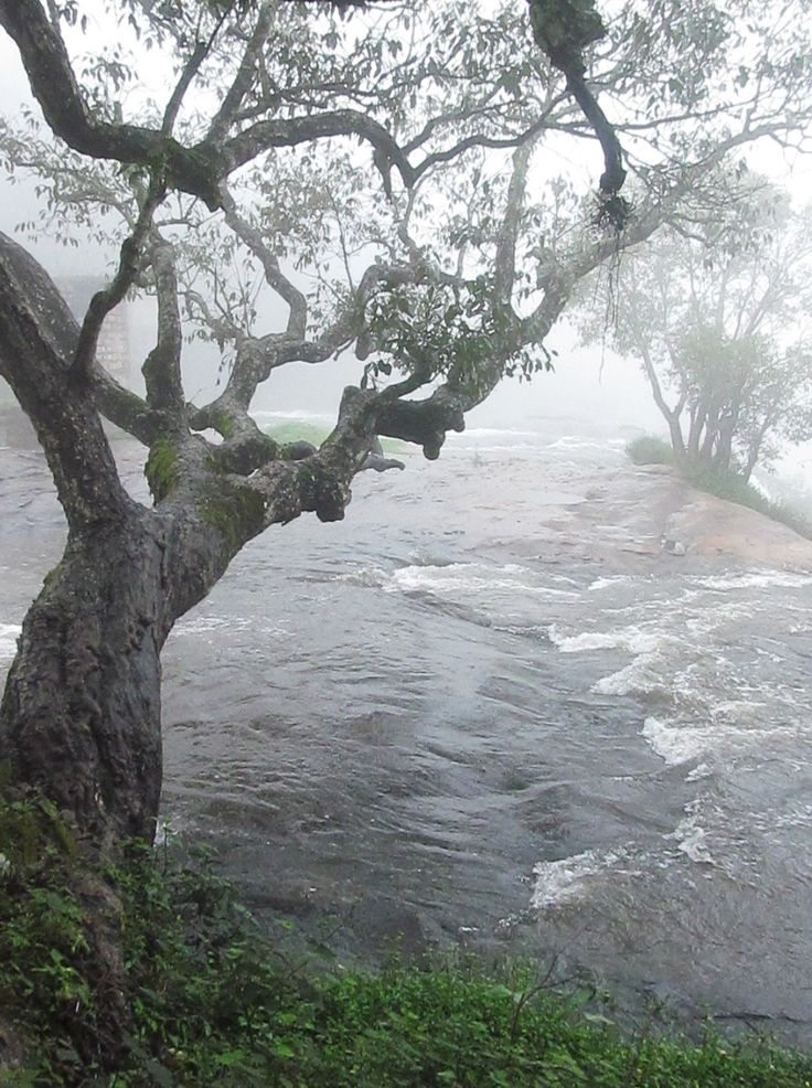 Palar Waterfall on a misty Mosoon hike