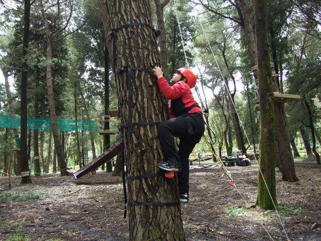 Parco Avventura Iblei  - ph. parcallario.it -  Pronti per l'avventura e il divertimento al Parcallario - If you are ready for adventure and fun, let's go to Parcallario #visitsicilyinfo #familyholiday