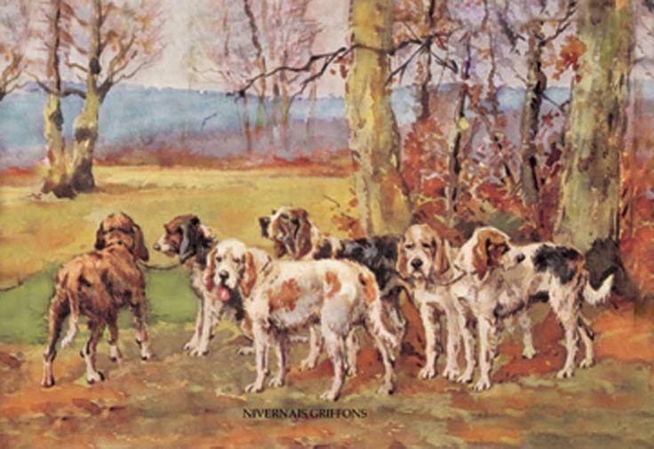 Nivernais Griffons, by Baron Karl Reille