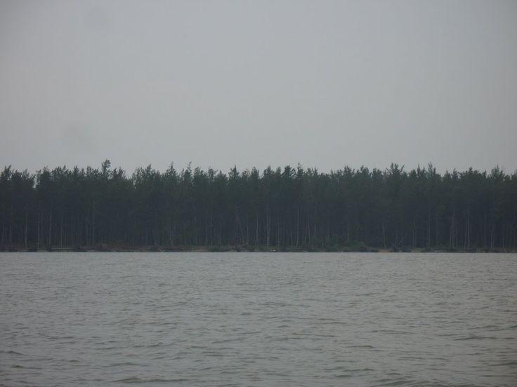 Pulau Selimpai Tempat Penyu Bertelur di Kalimantan Barat - Kalimantan Barat