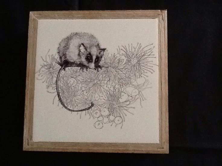 """""""In the Pollen"""" pen and ink illustration by Shelley Lee Langdon.  Printed onto stone, using recycled materials. $95"""