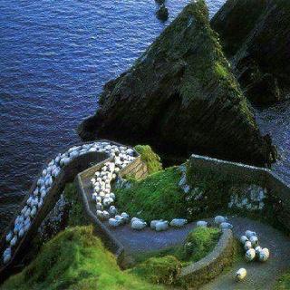 Ireland...always Ireland.