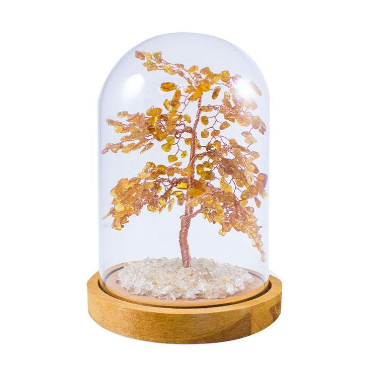 8 Inch Feng Shui Amber Tree with Glass Cover