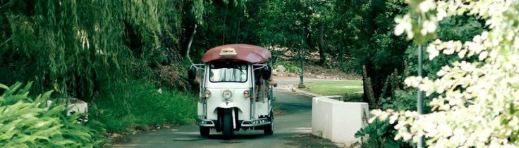 Explore Stellenbosch with a Tuk-Tuk. You can use it as a taxi or make tours and visit wineries.