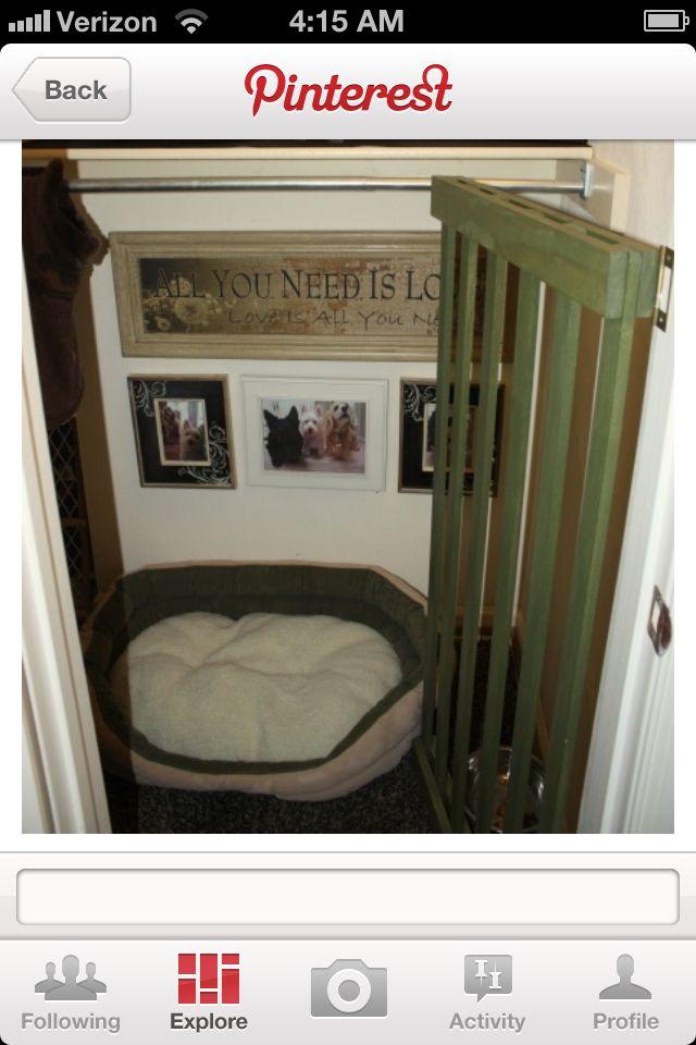 Dog Room Ideas 60 best dog room images on pinterest   dog rooms, dog kennels and