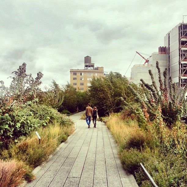 A peaceful and refreshing above-the-city, between-the-buildings urban garden walkway.