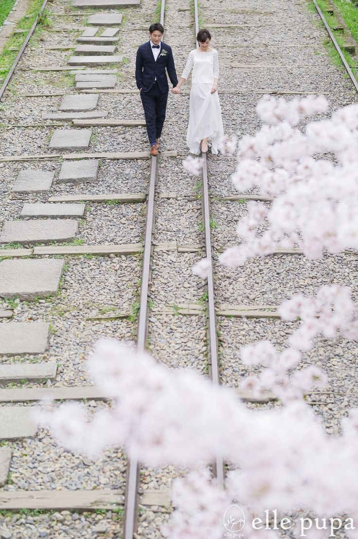 京都*桜三昧 | *elle pupa blog*