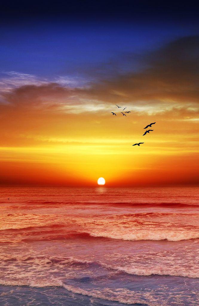 25 best ideas about beautiful sunset on pinterest