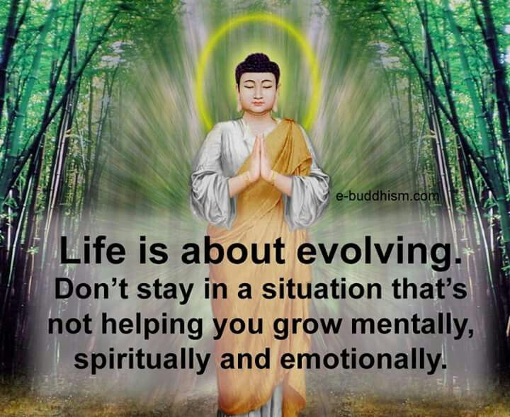 Let life help you grow in the all the right ways!