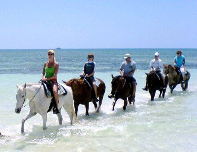 Pinetree Stables, Freeport, Bahamas next time I wanna ride on the beach :)