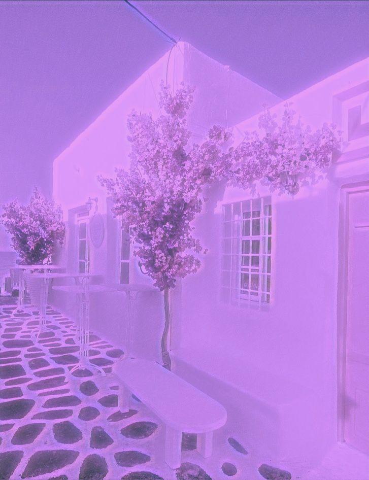 katiep4gymnast purple aesthetic picture