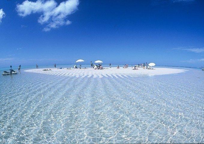 みなさんは、ハワイにある「サンドバー」ってご存知ですか?潮の流れや満ち引きにより、一時的に砂州が地表に現れる現象をいいます。まるで天国のように美しいこのハワイの秘境、それ以上に美しいサンドバーが国内に存在するってご存知でしたか?干潮時にのみ姿を現す幻の浜、百合ヶ浜。鹿児島県にある与論島の海に現れます。透明度の高い海に、ぽっかりできた白い島のような百合ヶ浜。砂州が透けて見えるほど美しい海。まるで天国みたい・・・こんな素敵な場所が日本にあるなんて!今年の夏はみんなで与論島の百合ヶ浜にいこう!