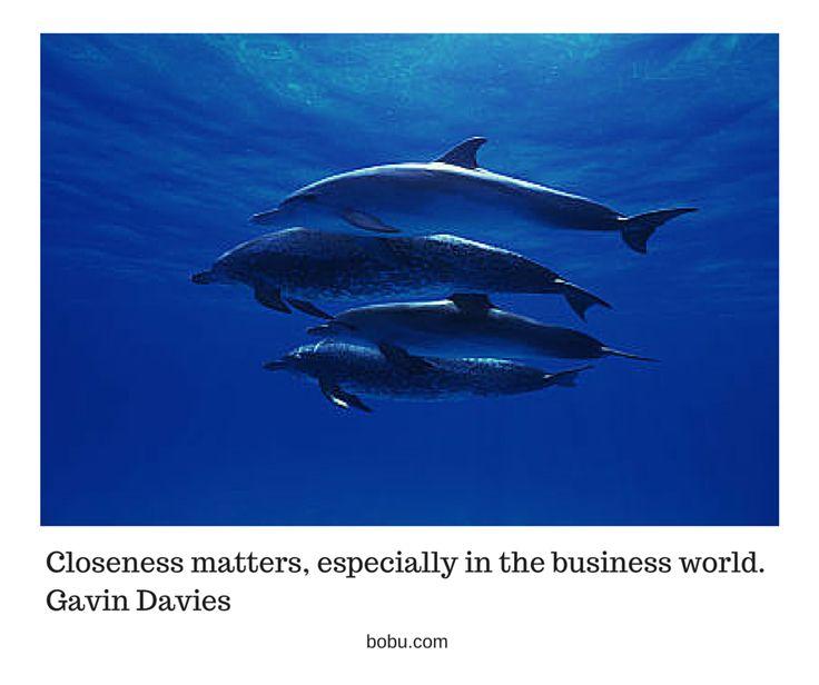 Closeness matters, especially in the business world. Gavin Davies