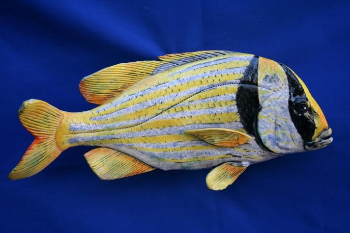 Raku fish Porkfish