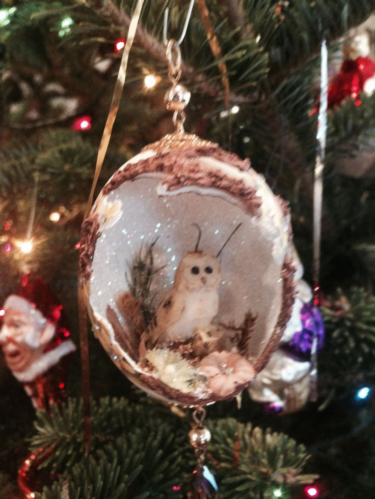 17 Best Images About Egg Shell Ornaments On Pinterest