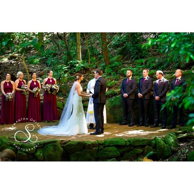 Rainforest wedding at the beautiful Mount Keira. Wollongong Wedding Photography www.samanthaohlsenphotography.com.au  #beautiful #instagood #picoftheday #photooftheday  #sydney #sydneyweddingphotographer #sydneyweddingphotos #weddings #bride #groom #romance