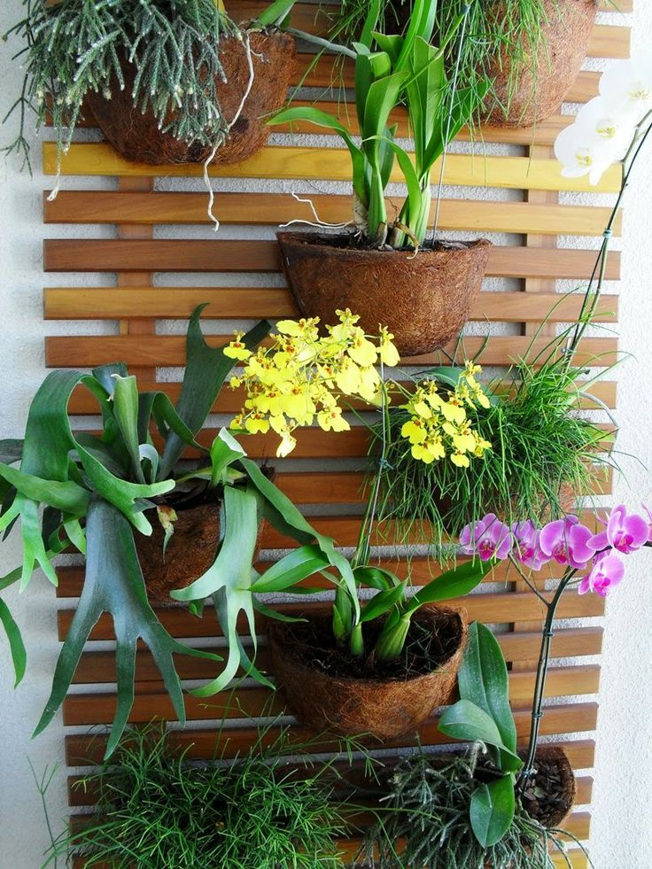 Dena Interiores: Jardim Vertical