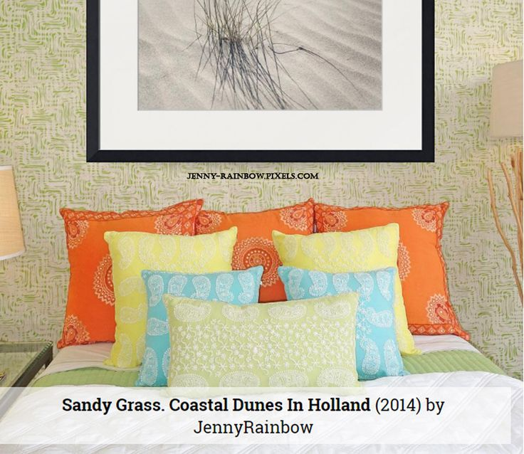 Sandy Grass. Coastal Dunes In Holland by Jenny Rainbow.  Pretty natural minimalistic print for your bedroom wall decor. Framed prints available here, order and payment online, delivery, 30 days money back guaranty: https://jenny-rainbow.pixels.com/featured/sandy-grass-coastal-dunes-in-holland-jenny-rainbow.html #JennyRainbowFineArtPhotography #Minimalism #FramedArt #Nature #HomeDecor #WallArt