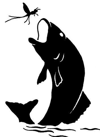 fish silhouette - Google Search*vector*