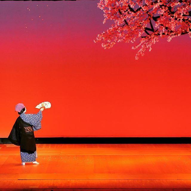 【hanabusagoryu_anna】さんのInstagramをピンしています。 《#春終日 (はるひねもす) チラチラと散らす #桜 🌸を見たり #お酒 🍶を飲んだりする #春 の最後の日を満喫する非常に分かりやすい、楽しい演目です✨。 今回の写真は昨年福岡で行った家元襲名の舞台の時に撮ったもので、色がとってもキレイですね〜😍💕 踊り手 英御流千鶴⭐️ #歌舞伎 #歌舞伎役者 #日本舞踊 #舞踊 #踊り #おどり #かぶき #ぶよう #着物 #きもの #kimono #kabuki #japan #japaneseTheater #japaneseDance #sakura #cherryBlossom #blossom #pink #gradient #グラデーション #夕日 #sunset #扇子 #日本舞踊家》