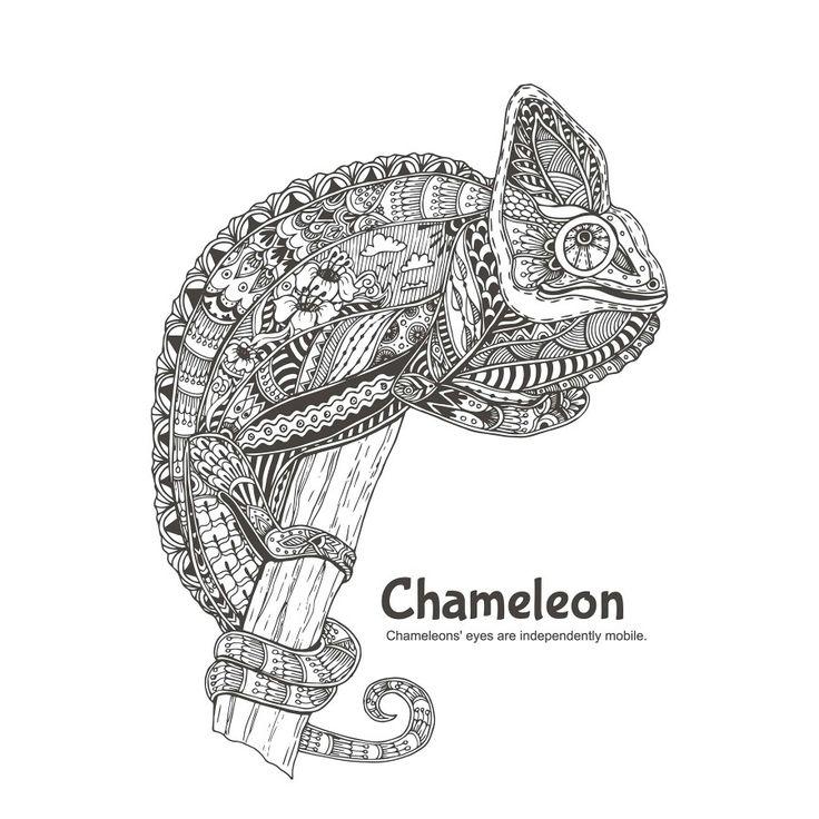 Farm Animals Colour Book Chameleon