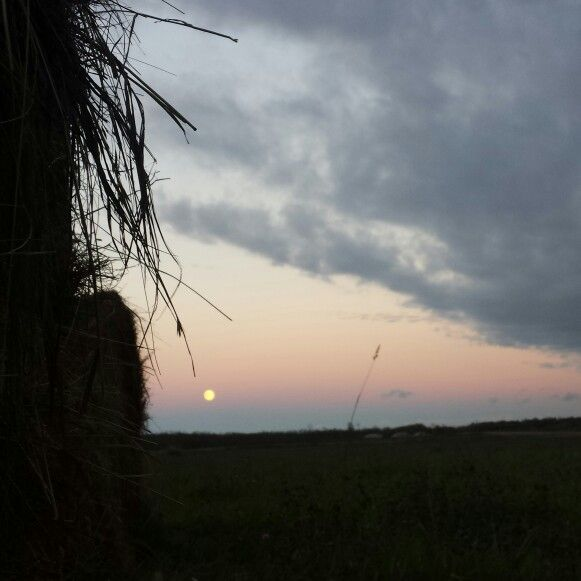 Lunar moon at sunset  •°•°•°•°•°• Photography by:(me) ebas
