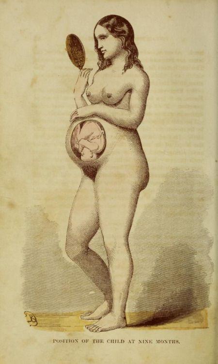 Ebook about sexual intercourse piękna splendid